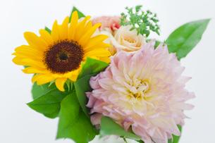 花束の写真素材 [FYI00051195]