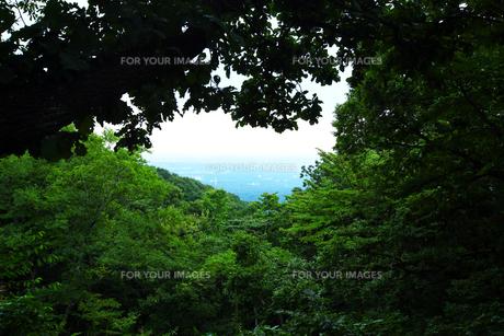 高尾山からの風景の写真素材 [FYI00051300]