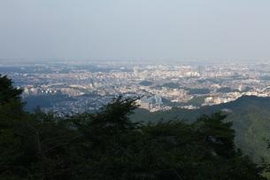 高尾山から見える東京の街の写真素材 [FYI00051315]