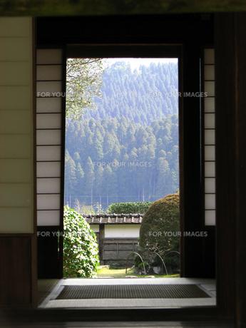 和室の風景の写真素材 [FYI00051485]