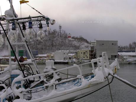冬の漁港の素材 [FYI00051517]