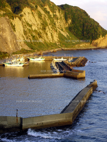 夕方の漁港の素材 [FYI00051734]