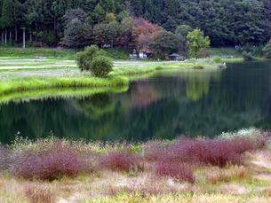 湖の秋の素材 [FYI00051740]