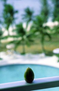 椰子の実とプールの素材 [FYI00051776]