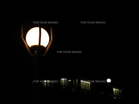 夜の街灯の素材 [FYI00051783]