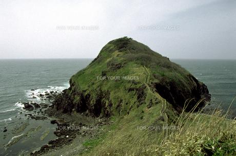 椿山と日本海の素材 [FYI00051788]