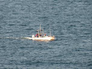 東京湾の漁船の素材 [FYI00051796]
