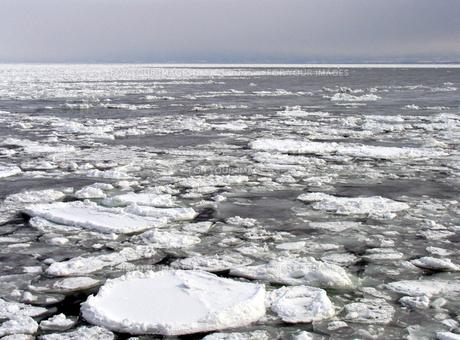 流氷の海の素材 [FYI00051842]