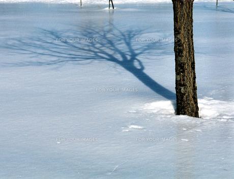 雪面と影の素材 [FYI00051846]