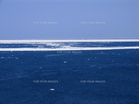 流氷の海の素材 [FYI00051854]