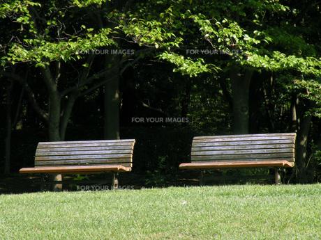 公園のベンチの素材 [FYI00051870]