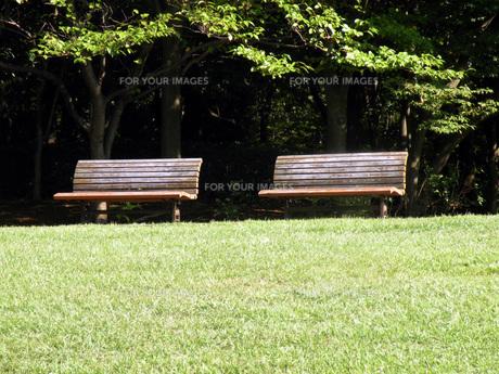 公園のベンチの素材 [FYI00051882]