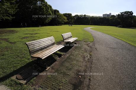 公園のベンチの素材 [FYI00051886]