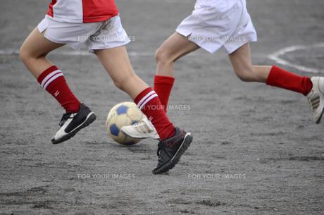サッカーの写真素材 [FYI00052043]