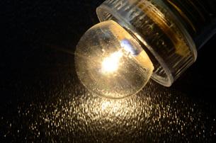 豆電球の写真素材 [FYI00052115]
