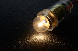 豆電球の写真素材 [FYI00052132]