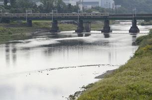 多摩川を渡る南武線の写真素材 [FYI00052175]