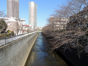 神田川と高層マンションの写真素材 [FYI00052336]