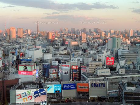 東京の街並みの写真素材 [FYI00052501]