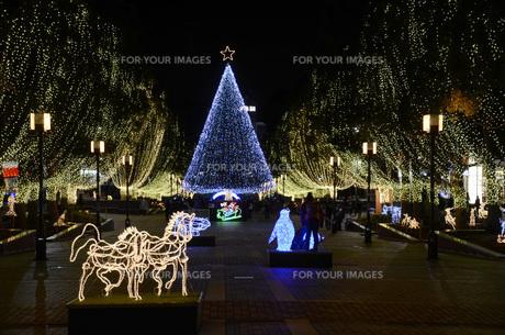 多摩センターのクリスマスイルミネーションの写真素材 [FYI00052738]