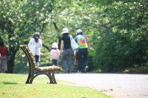 公園のベンチの写真素材 [FYI00053252]