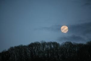 月の写真素材 [FYI00053261]