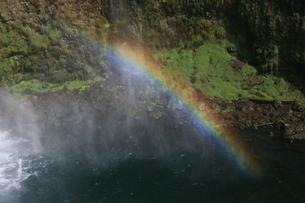 虹の写真素材 [FYI00053265]