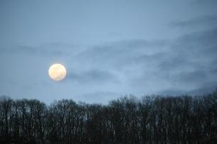 月の写真素材 [FYI00053267]
