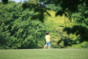 公園 の写真素材 [FYI00053277]