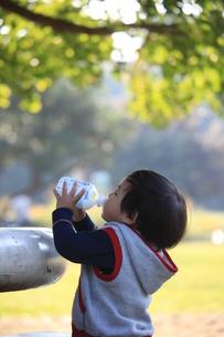 子供の写真素材 [FYI00053373]