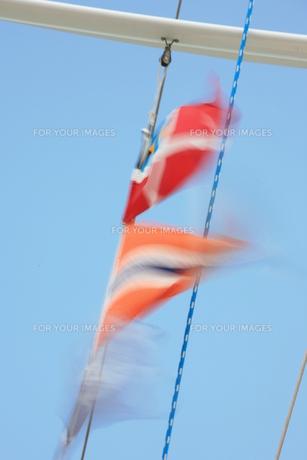 旗の写真素材 [FYI00053504]