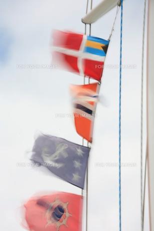 旗の写真素材 [FYI00053508]