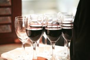 ワインの写真素材 [FYI00053712]