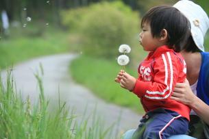 子供の写真素材 [FYI00054161]