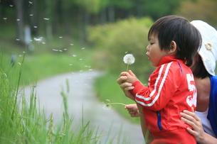子供の写真素材 [FYI00054164]