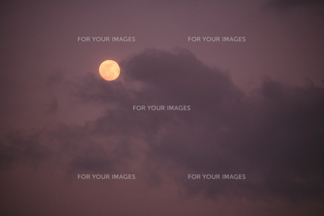 満月の写真素材 [FYI00054390]