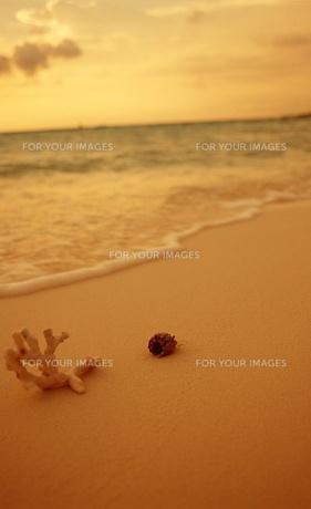 砂浜の写真素材 [FYI00054444]