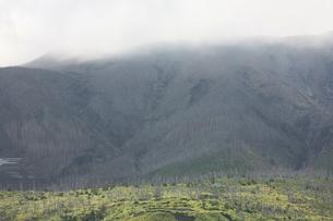 緑が増えてきた三宅島 2008年の写真素材 [FYI00054633]