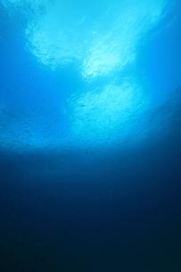 海中の写真素材 [FYI00055043]