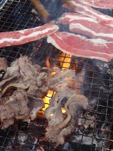 焼き肉の写真素材 [FYI00055394]