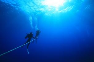 体験ダイビングの写真素材 [FYI00055489]