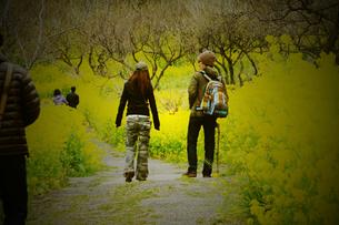 散歩の写真素材 [FYI00055823]
