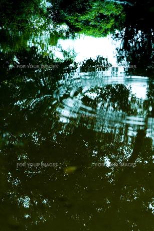 水たまりの素材 [FYI00056747]