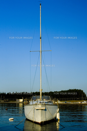 ヨットの写真素材 [FYI00056754]