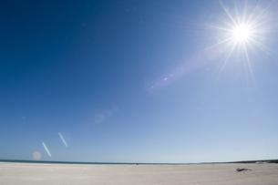 オーストラリア シェルビーチの写真素材 [FYI00056897]
