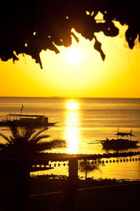 フィリピン セブ島の朝焼け (縦)の素材 [FYI00056932]