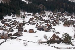 冬の白川郷の写真素材 [FYI00057219]