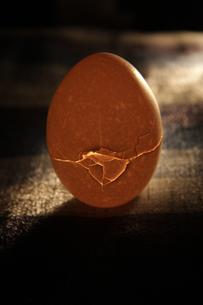 eggの写真素材 [FYI00057452]