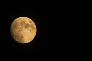 月の素材 [FYI00057504]