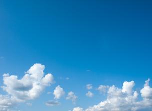 青空 上部コピースペースの写真素材 [FYI00057549]